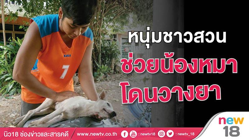 หนุ่มชาวสวนช่วยน้องหมาโดนวางยา