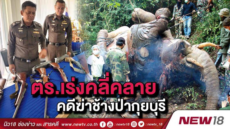 ตร.เร่งคลี่คลายคดีฆ่าช้างป่ากุยบุรี