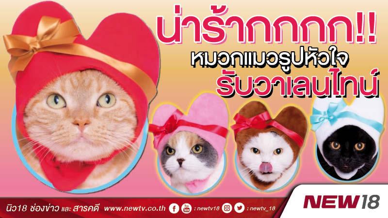 น่ารัากกกก!! หมวกแมวรูปหัวใจ รับวาเลนไทน์